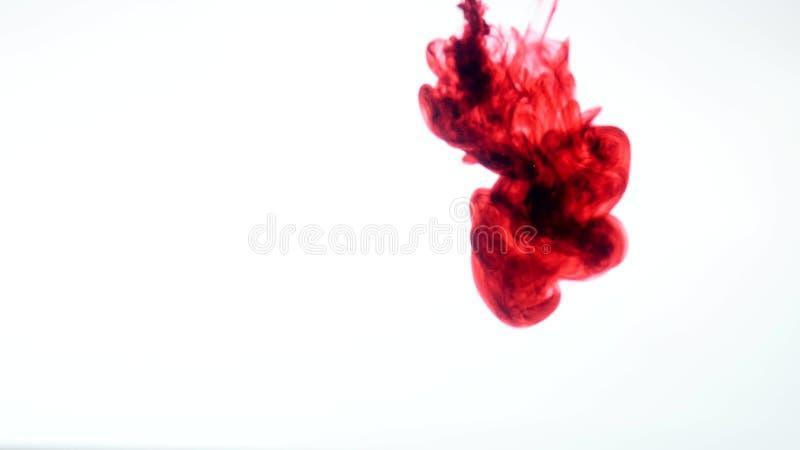 Tinta roja en agua Extracto foto de archivo libre de regalías