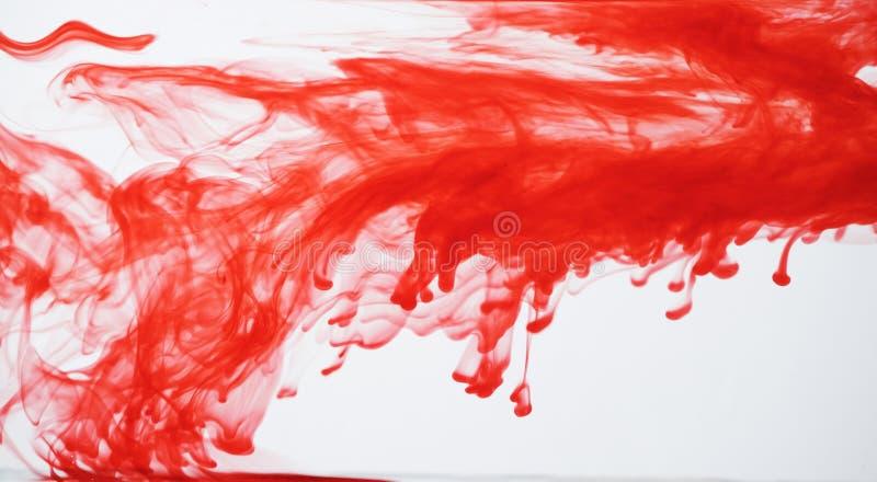 Tinta vermelha que dispersa-se na água fotografia de stock royalty free