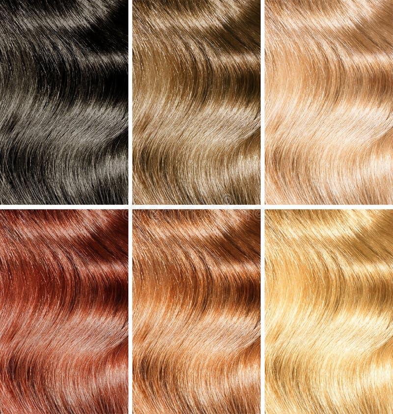 Tinte del pelo o diversas muestras de los colores del tinte fijadas foto de archivo libre de regalías