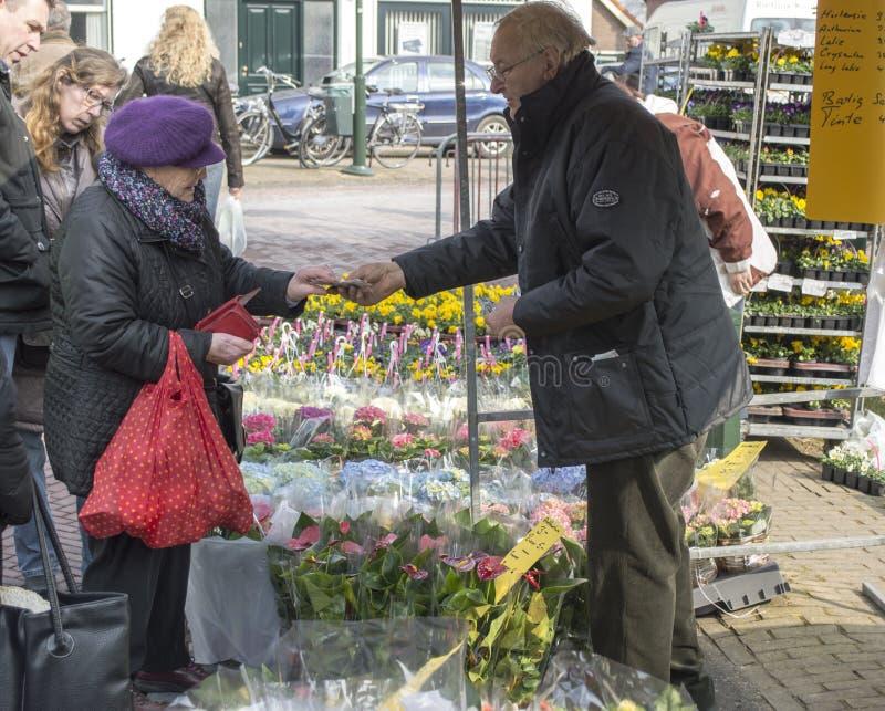 Ettårig växt marknadsför i Tinte royaltyfri fotografi