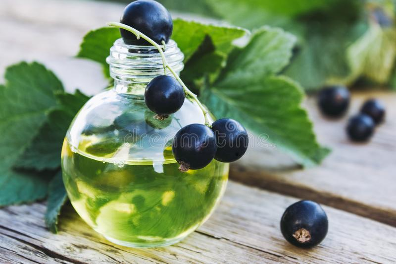 Tinte medicinal con la grosella negra en una botella de cristal Extracto de la medicina anticatarral de grosella negra imagenes de archivo