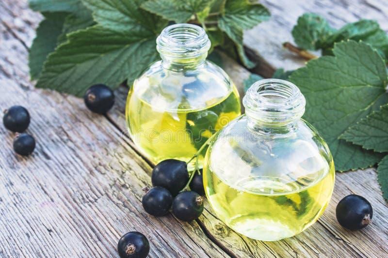 Tinte medicinal con la grosella negra en una botella de cristal Extracto de la medicina anticatarral de grosella negra fotos de archivo