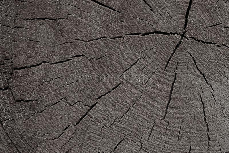 Tinted wooden texture background. cracked gray monochrome base rustic eco close-up base design royalty free stock photos