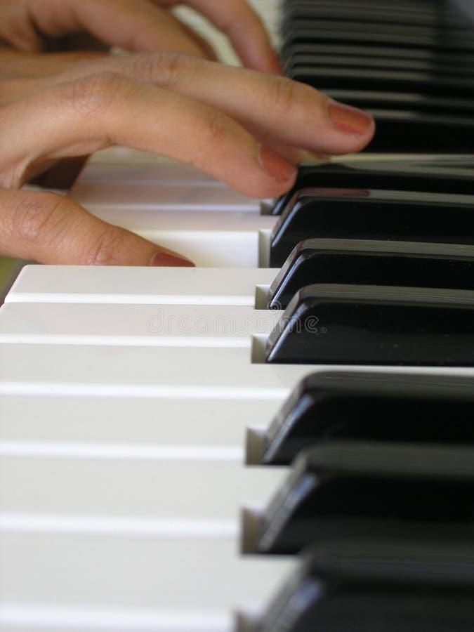 Download Tintement des ivories photo stock. Image du musique, piano - 61446