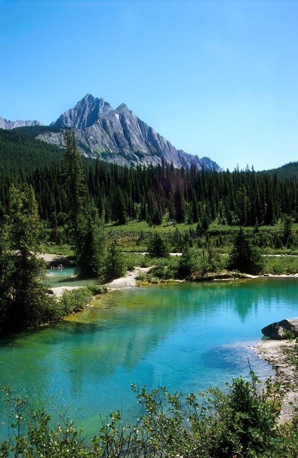 Tinten-Potenziometer, Banff-Nationalpark lizenzfreies stockfoto