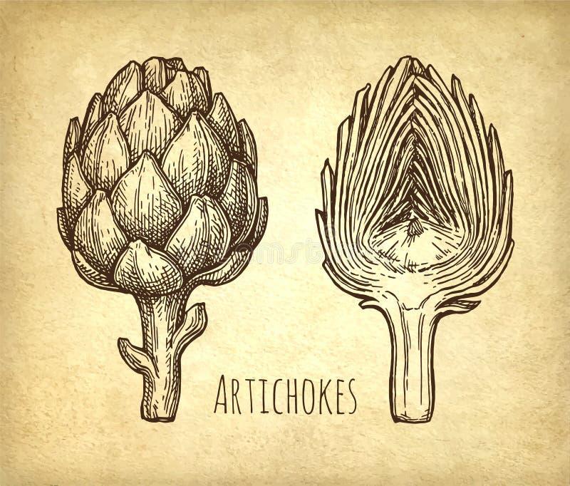 Tintenskizze von Artischocken lizenzfreie abbildung