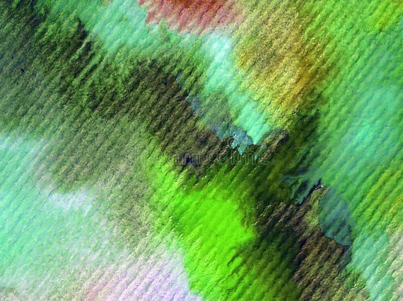 Tintura colorida bonita do ramo da mola do fundo do sumário da arte da aquarela ilustração royalty free