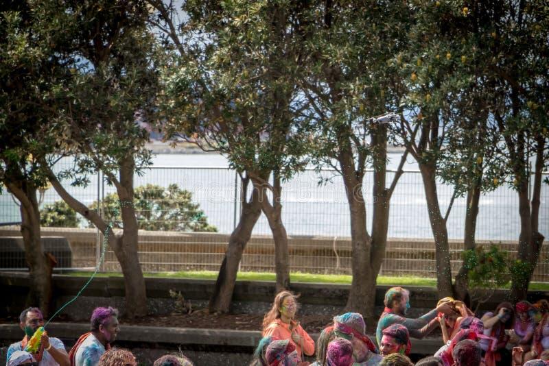 Tintura di colore di espedienti del fuco e pistola di acqua al festival di colore di Holi immagine stock libera da diritti