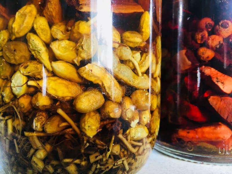 Tinturas alcoólicas de plantas medicinais fotos de stock