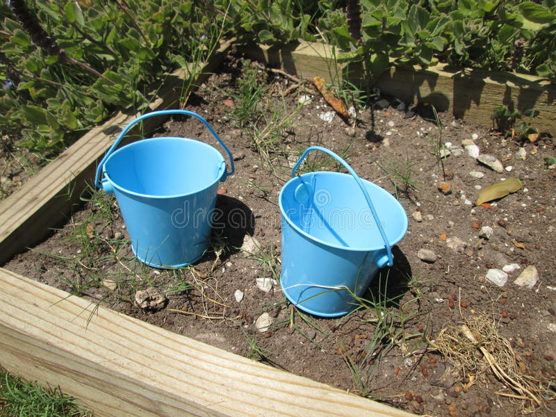 Tiny Buckets. stock images