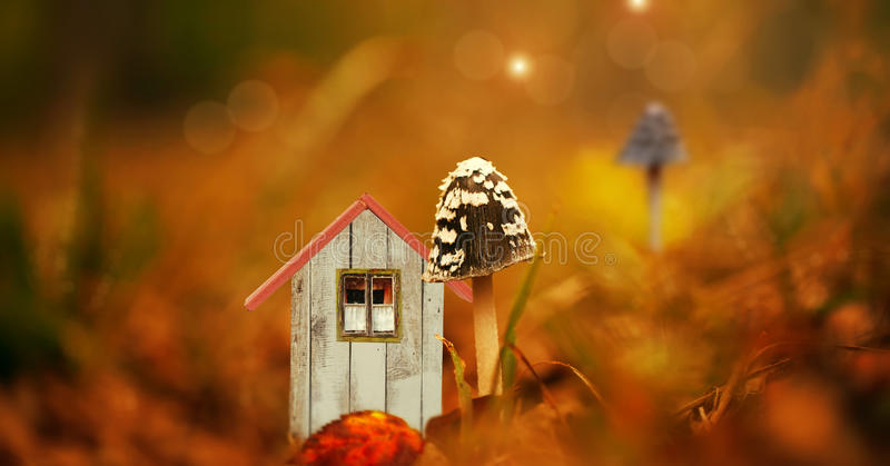 It is a tiny elf cottage. In a forest with a mushroom royalty free illustration