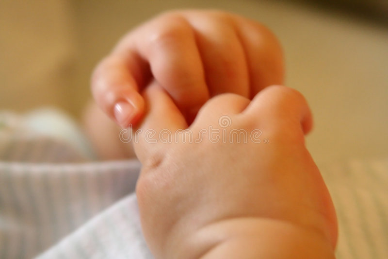 Tiny hands royalty free stock image