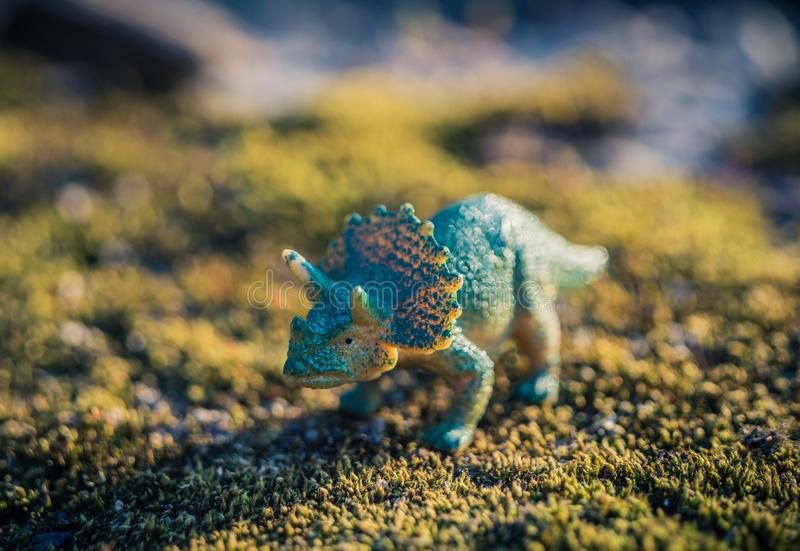 Tiny toy triceratops in the grass. Abstract royalty free stock photo