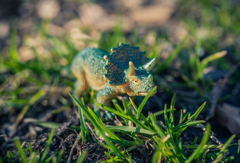 Tiny toy triceratops in the grass. Abstract stock images