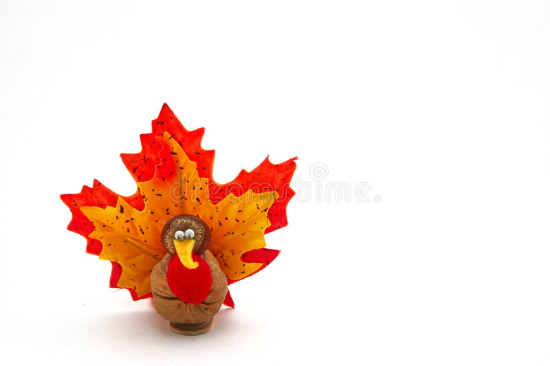Tiny turkey for Thanksgiving. A hand crafted nutty tiny turkey. Could be used as a 'Happy Thanksgiving' greeting card. Also possible use for Halloween stock photography