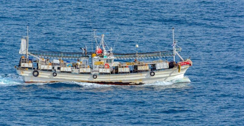 Tioarmad bläckfisk som fiskar det ljusa fartyget royaltyfri fotografi