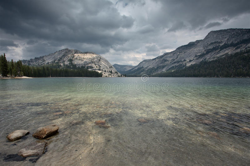 Tioga Road royalty free stock images