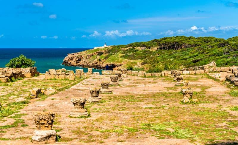 Tipasa废墟,一罗马colonia在阿尔及利亚,北非 免版税库存照片