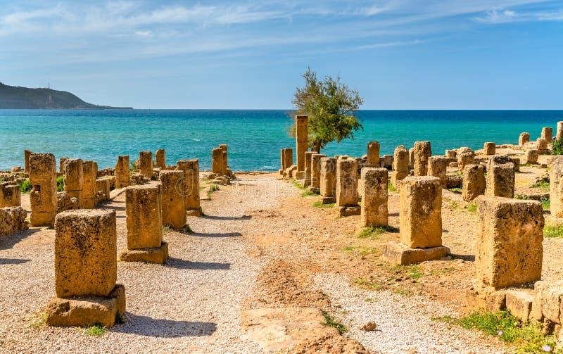 Tipasa废墟,一罗马colonia在阿尔及利亚,北非 免版税图库摄影