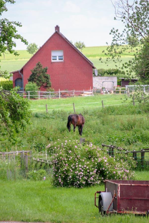 Tipi di villaggi tedeschi Querenhorst, Wolfsburg, Germania immagine stock