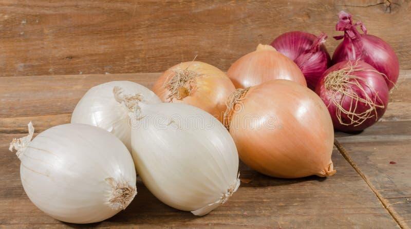 Download Tipi differenti di cipolle immagine stock. Immagine di dolce - 56888729