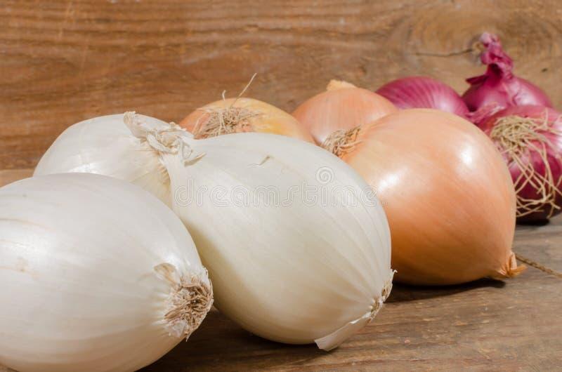 Download Tipi differenti di cipolle fotografia stock. Immagine di vegetariano - 56888734