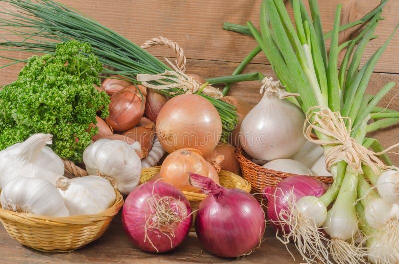 Download Tipi Differenti Di Cipolle, Di Aglio E Di Scalogni Fotografia Stock - Immagine di verdura, tipi: 56890338