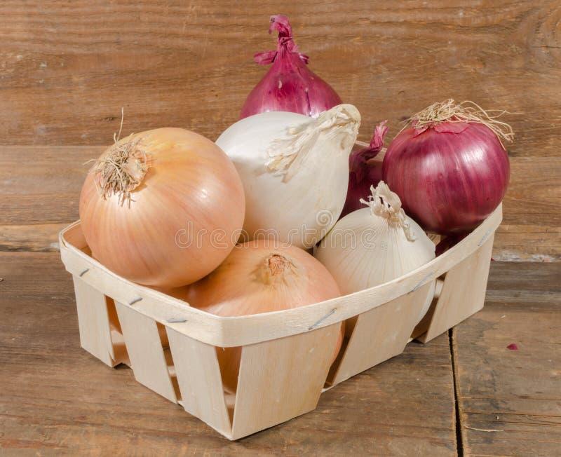 Download Tipi Differenti Di Cipolle In Un Canestro Immagine Stock - Immagine di tipi, verdura: 56888753
