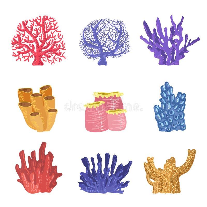 Tipi differenti di scogliere tropicali Coral Collection illustrazione vettoriale