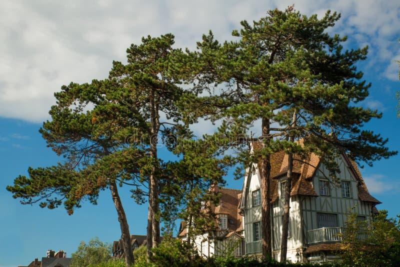 Tipical-Haus von Normandie mit großem Baum stockfotografie
