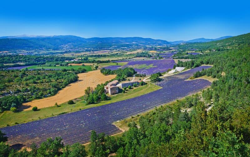 Tipical Provencal krajobraz zdjęcia stock