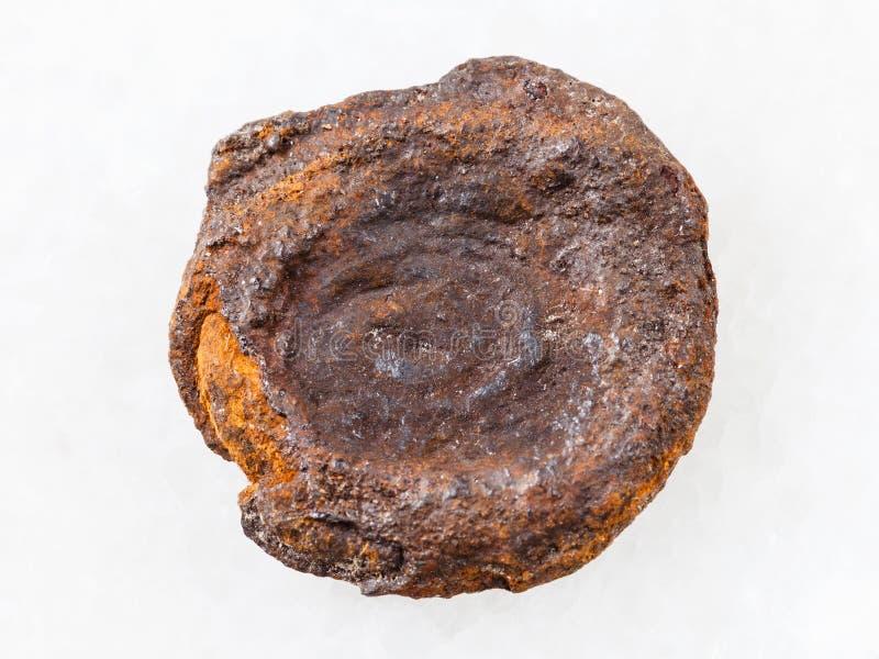 tipo áspero da moeda do minério de ferro do lago (limonite) no branco imagem de stock royalty free