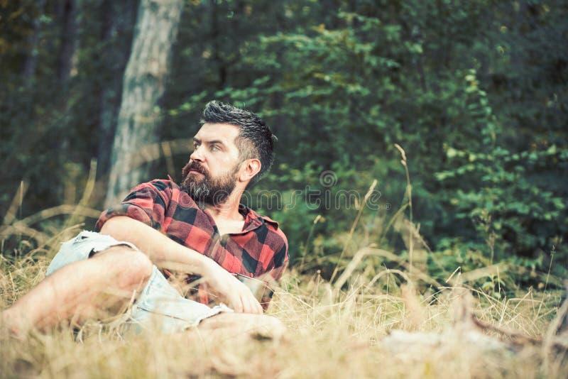 Tipo che si trova sull'erba in parco o in foresta che si accampa in legno Uomo barbuto con gli occhi di blu che guardano al lato  immagine stock