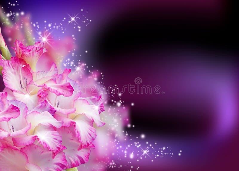 Tipo de flor ilustração royalty free