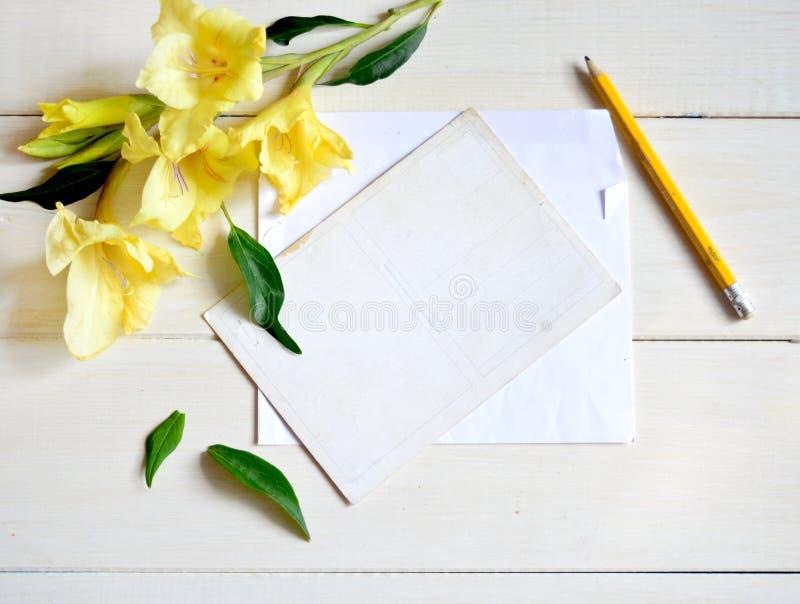 Tipo de flor e cartão amarelos com o lápis no fundo de madeira imagem de stock