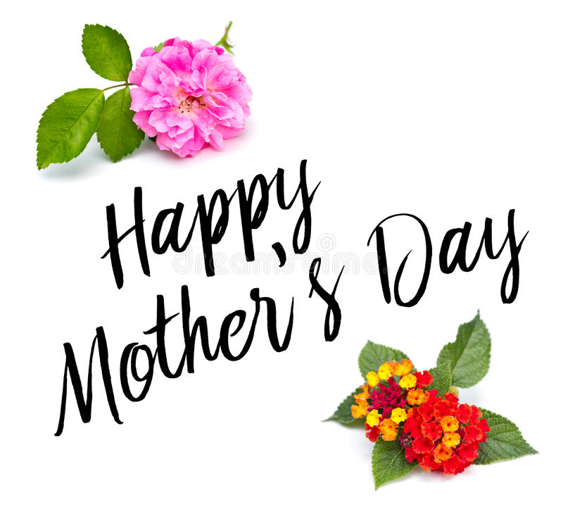 Tipo del día de madres con las flores fotografía de archivo libre de regalías
