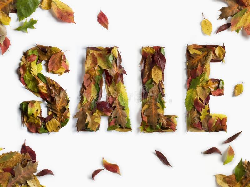 Tipo di vendita inverno/di autunno fotografia stock