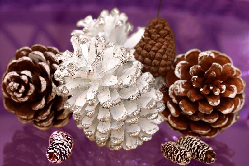 Tipo diferente de cones para o Natal fotos de stock