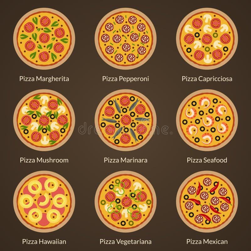 Tipo diferente de pizza ilustração stock