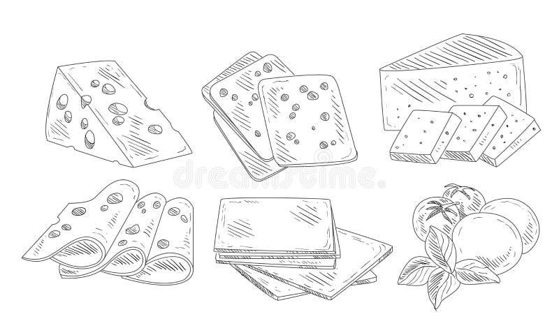 Tipo diferente tirado mão de grupo do queijo, produtos láteos orgânicos, Edam, Maasdam, mozzarella com Basil Leaves, corte ilustração royalty free