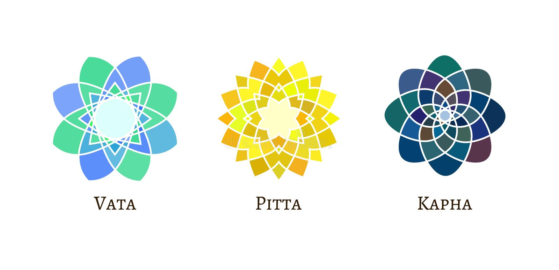 Tipo muestras de los doshas de Ayurveda ilustración del vector