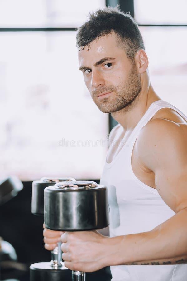 Tipo muscolare del culturista che fa gli esercizi con le teste di legno in palestra immagine stock libera da diritti