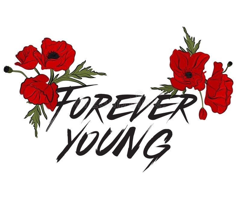 Tipo para siempre joven cita Cartel creativo de las letras Caligrafía de la moda de la camiseta Flores rojas de la amapola con el libre illustration