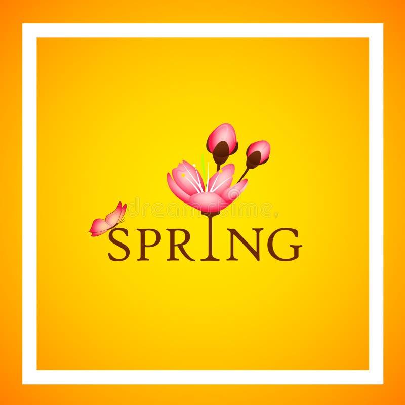 Tipografia da mola com as pétalas e a borboleta cor-de-rosa de florescência das flores da cereja em um fundo amarelo ilustração do vetor