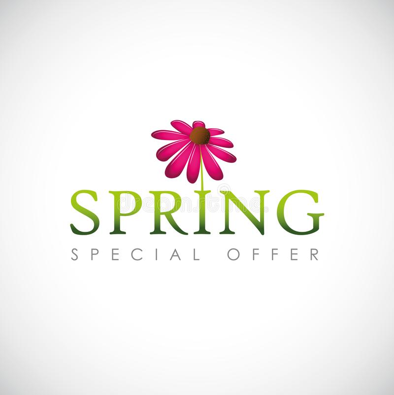 Tipografia da oferta especial da mola com a pétala de florescência cor-de-rosa da flor ilustração royalty free
