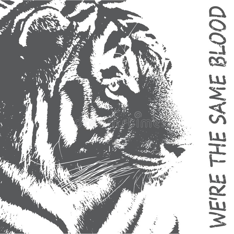 Tipografia della tigre, grafici della maglietta, vettori Siluetta di una tigre nel gray Protezione del concetto degli animali sel illustrazione di stock