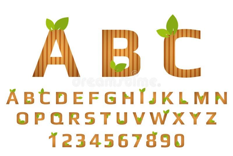 Tipografia a strisce della fonte con struttura di legno e le foglie organiche verdi Alfabeto di Eco fotografia stock