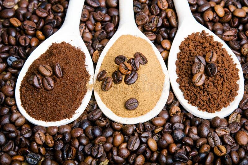 Tipos de café: terras, instante, pó, feijões de café fotografia de stock