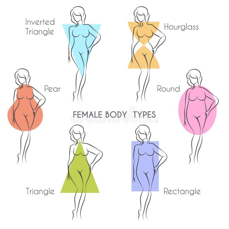 Tipos de corpo fêmea ilustração stock