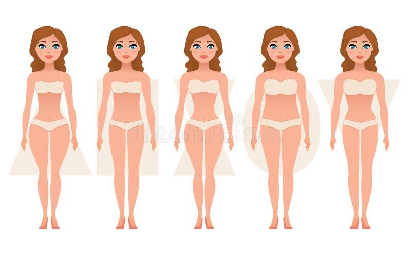 Tipos de corpo fêmea de figuras ilustração do vetor